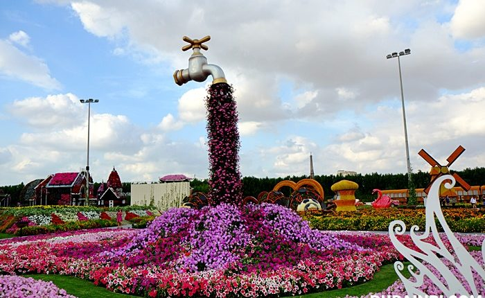 dubai miracle garden photo (2)