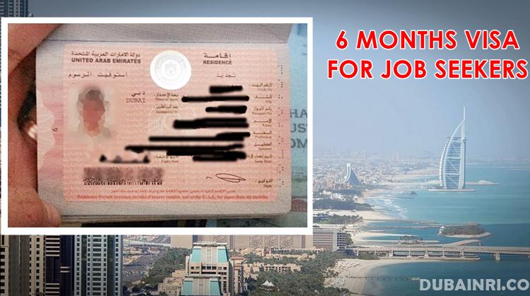 6 months visa job seekers