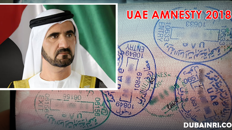 uae amnesty 2018